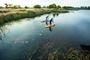 游客在湿地泛舟。